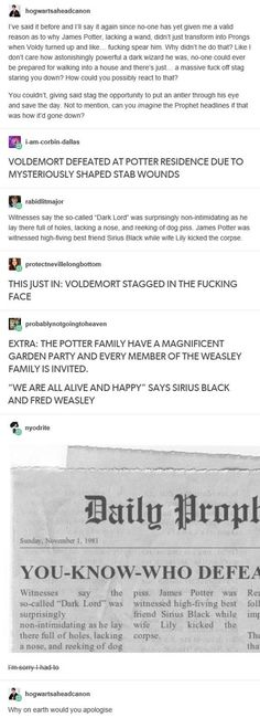Harry Potter - James, Voldemort, Sirius, Lily and the Weasleys