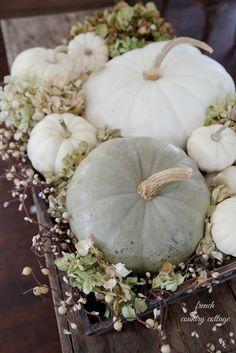 lizmarieblog.com How to decorate with white pumpkins.