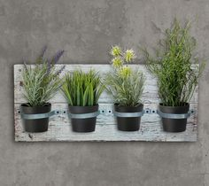 Porta Macetas Con Pallets Para Colgar - $ 495,00 en Mercado Libre                                                                                                                                                                                 Más Garden Art, Garden Plants, Garden Design, Plant Wall, Plant Decor, Herb Wall, Flower Bowl, Mason Jar Diy, Decoration