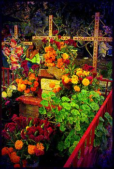 Altar (altar) and Offerings (ofrendas) - Day of the Dead - Día de Muertos by uteart