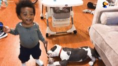 Pit Bull Puppy And Boy Grow Up Together | The Dodo