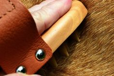 Read our expert tips and essential products for welcoming your new pet. #dogbrush #TuesdayMorning Dog curry brush $4.99 (compare at $9.99)