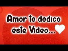 IMAGENES DE GATITOS CON FRASES DE AMOR   #frasesdeamor - YouTube