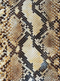 Find snake texture stock images in HD and millions of other royalty-free stock photos, illustrations and vectors in the Shutterstock collection. Fabric Textures, Textures Patterns, Print Patterns, Snake Patterns, Snake Skin Pattern, Motif Serpent, Sicis Mosaic, Art Grunge, Motifs Textiles