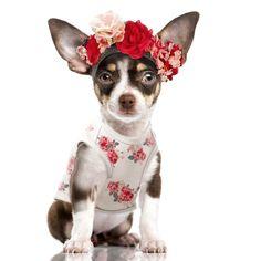 T-Shirt écru avec imprimé floral vintage Impression Gris anthracite « Mademoiselle »