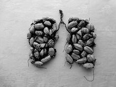 Ines Seidel | ways to wear the news (inhale)