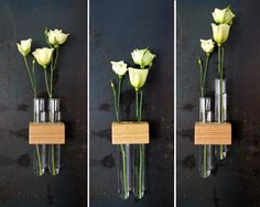 Hey, I found this really awesome Etsy listing at https://www.etsy.com/listing/159203546/magnetic-test-tube-flower-bud-vase