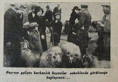 eski bir Kurban Bayramı Haberi: (4 Mart 1936) via @HalicPostasi #istanbul #istanlook