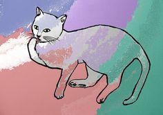 Color Cat - Decorative Colorful Cat Art Print