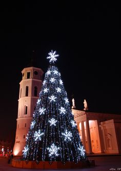 Christmas tree, Cathedral Square Vilnius, Lithuania
