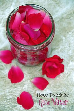 I decided to put my gorgeous rose bushes to good use this weekend and make some DIY rose water.