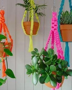 Hanging Pot Plants -- Hand-knotted neon macrame planters, available from The Small Garden, thesmallgarden.com.au