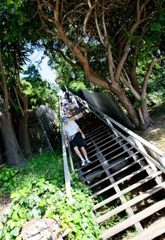 Santa Monica stairs where everyone goes to sweat off what the eat on the amazing streets of Santa Monica