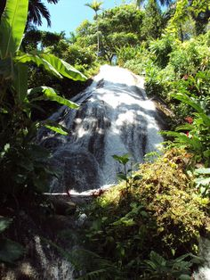 This waterfall and scenery is breathtaking.....@Melanie Juhos Tourist Board #jamaicamihappy