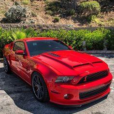 Red Cobra Pony