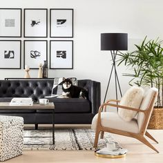 Because the living room is the reception room par excellence, the choice of furniture and decoration is particularly important. Our living room is also a cocoon from which the… Continue Reading → Living Room Design Diy, Living Room Scandinavian, Couches Living Room, Living Room Decor Neutral, Leather Couches Living Room, Black Living Room, Apartment Living Room, Black Couch Living Room, Boho Living Room