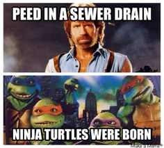 Chuck Norris vs The Ninja Turtles, who wins? #TMNT #NinjaTurtles #TeenageMutantNinjaTurtles #ChuckNorris