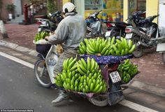 Only in Vietnam: motorbikes captured by foreign photographer - News VietNamNet
