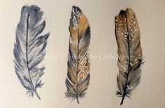 Natural feather watercolour by Siparia on Etsy