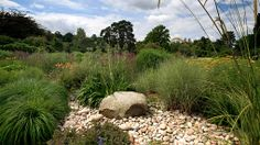 Planting plans inspired by RHS gardens