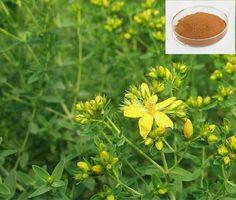 http://www.gmp-factory.com/herbal-supplements/enhance-immunity-/st-john-swort-extract.html http://www.gmp-factory.com/herbal-medicine/antiviral-/citrus-aurantium-extract.html