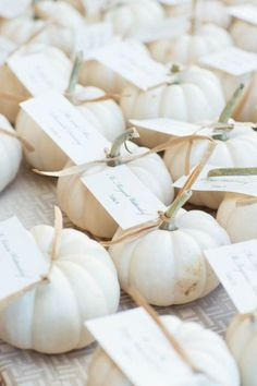 Modern Wedding at Ocean House: Heidi & Brendan - BKB & CO. | Boston Wedding Photography and Video Studio. White pumpkin wedding favor