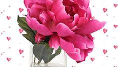 Εικόνες Χρόνια Πολλά - eikones top Happy Birthday, Flowers, Plants, Cards, How To Make, Decoration, Roses, Happy Brithday, Decor