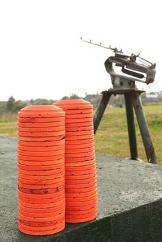 I definitely want to try skeet shooting at some point