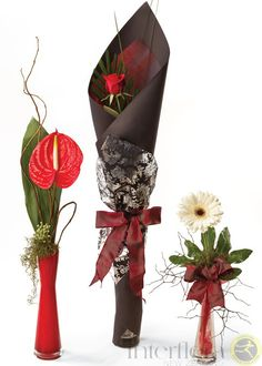 Single Flowers in Vase http://www.interflora.co.nz/flowers/product/index.cfm/new-zealand/vases/single-flowers-in-vase