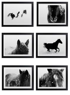 Black and white horse art print gallery wall inspiration
