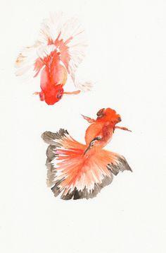 Goldfish 6 x9 Original Watercolor Painting by MidoriAiStudio, $20.00