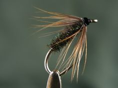Don Bastian Wet Flies Wet fly photos, recipes, interesting information and other fly tying endeavors - campinglivez Fly Fishing Tips, Pike Fishing, Best Fishing, Fishing Stuff, Fishing Reels, Salmon Fishing, Trout Fishing, Fly Tying Desk, Salmon Flies