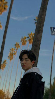 Nct Logo, Kpop Iphone Wallpaper, Huang Renjun, Dream Chaser, Julia, Kpop Groups, Boyfriend Material, Jaehyun, Nct Dream