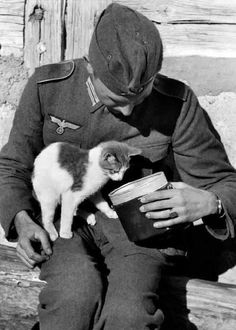 A German soldier sha A German soldier sharing its lunch with a kitty (WWII). A German soldier sha A German soldier sharing its lunch with a kitty (WWII). German Soldiers Ww2, American Soldiers, German Army, Pin Ups Vintage, Vintage Cat, Men With Cats, Ww2 Propaganda Posters, International Cat Day, Ww2 Pictures