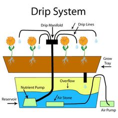 The 46 Best Hydroponics Images On Pinterest Hydroponics System