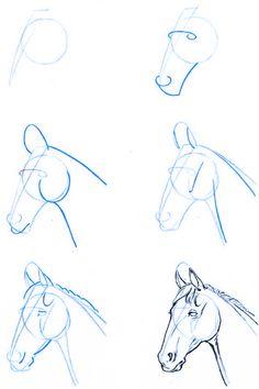 Dibujo_estructura-cabeza_caballo-02                                                                                                                                                                                 Más