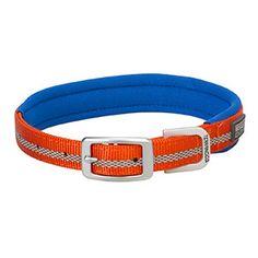 Reflective Lined Dog Collar Orange Terrain
