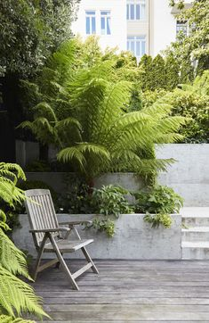 🌳A quiet relaxing spot surrounded by lush plantings.🌳 Love the Tasmanian Tree Fern and the concrete retaining wall. Concrete Retaining Walls, Garden Retaining Wall, Sloped Garden, Little Gardens, Back Gardens, Small Gardens, Roof Gardens, City Gardens, Garden Nook