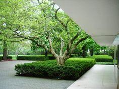 Eero Saarinen eames Alexander Girard Daniel Urban Kiley miller house