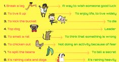 An idiom is a phrase or an expression that has a figurative, or sometimes literal, meaning. In this lesson, you will learn body idioms in English. Common English Idioms, Common Idioms, English Phrases, English Vocabulary, English Grammar, English Language, Learn English For Free, Improve Your English, Subway Surfers Game
