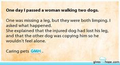 even dogs will do great things to make a friend feel better