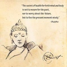 The secret of health for both mind and body is not to mourn for the past, nor to worry about the future, but to live the present moment wisely. - Buddha.
