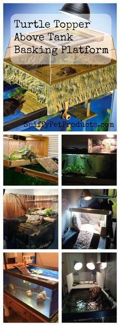 ♥ Pet Turtle ♥ Above Tank Turtle Topper and Basking Platform Ideas to help you set up your tank and take the best care of your pet turtle.