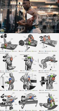 How to enlarge the triceps ?How to enlarge the triceps – # increased ?How to enlarge the triceps ?How to enlarge the triceps – # increased Fitness Workouts, Gym Workout Tips, Biceps Workout, Strength Training Workouts, Fun Workouts, Bodybuilding Training, Bodybuilding Workouts, Men's Bodybuilding, Back Weight Exercises