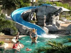 Outdoor pool with slide  Summit USA Swimming Pool Slides for In Ground Residential and ...