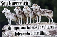 Olhar oculto...: Liderando lobos...