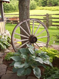Country garden...love the wagon wheel and country fence