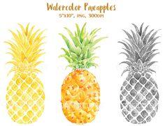 Watercolor Pineapples by Corner Croft on Creative Market?u=chengjing