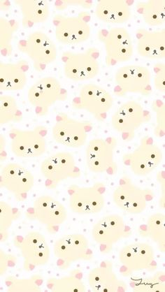 Korilakkuma (wallpaper)                                                                                                                                                     More