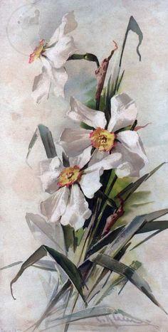 peinture sur porcelaine catherine bergoin - Cerca con Google